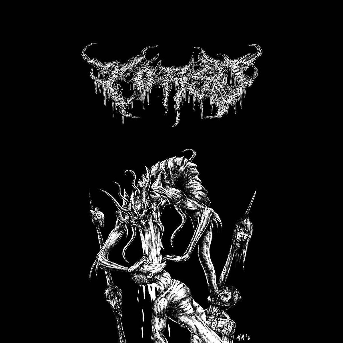 ambient black metal last fm